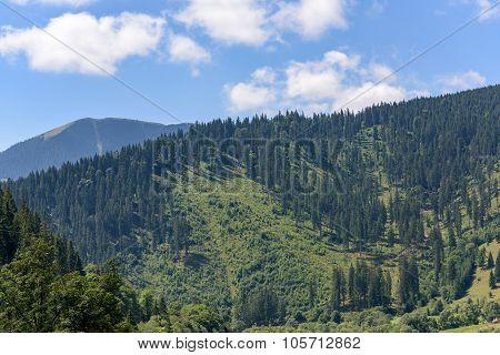 Beautiful mountain landscape in Romania at Vatra Dornei