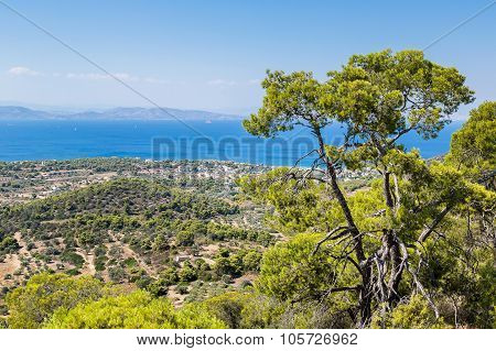 Panoramic Landscape Of Aegina Island