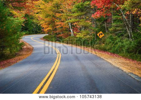 Winding Road Through Autumn Trees In New England