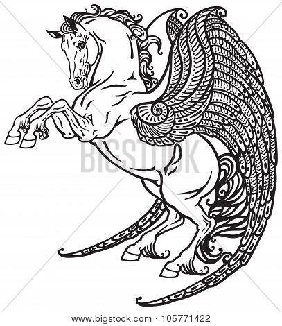 Pegasus black and white