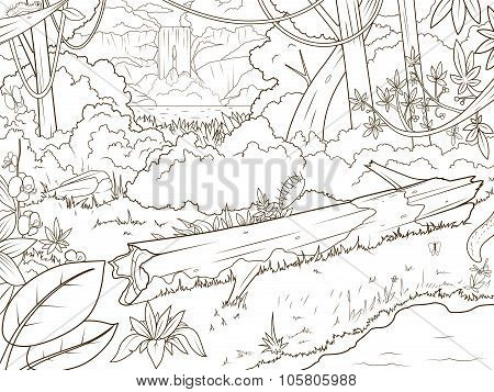 Jungle forest waterfal coloring book cartoon