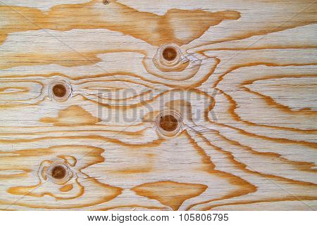 Plywood board made of softwood