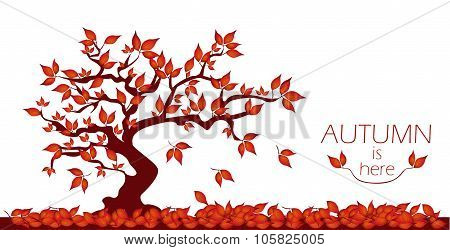 Autumn Tree With Text.