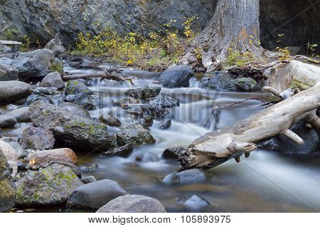 Mountain Stream Bear Creek Okanagan Valley Bc