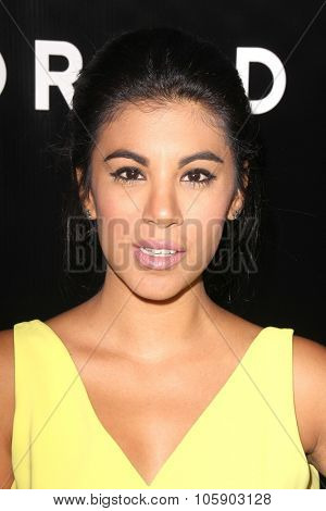 LOS ANGELES - OCT 22:  Chrissie Fit at the Rebel Wilson for Torrid Launch Party at the Milk Studios on October 22, 2015 in Los Angeles, CA