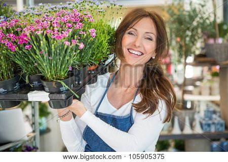Portrait of smiling mid adult botanist carrying crate full of flower plants in store