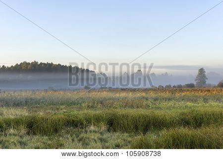 Foggy Meadow During The Sunrise In Poland