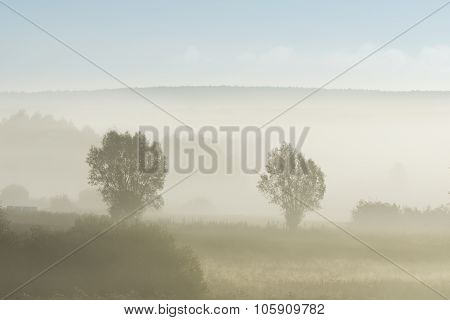 Foggy Morning In The Autumn Time In Poland