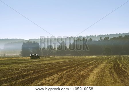 Tacks From Tractor In A Golden Wheat Field In Poland