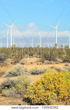 Turbines in California Desert