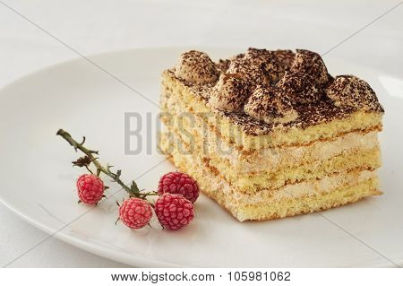 piece of cake with cocoa and frozen raspberries