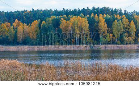 Beautiful Landscape Of Autumnal Forest Near Lake