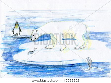 The Bear Catches Fishes