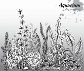 Vector monochrome hand drawn illustration with aquarium algae corals. Underwater world. Black and white hand drawn illustration poster
