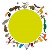 Round frame. Sloth anteater toucan lama bat seal armadillo boa manatee monkey dolphin Maned wolf raccoon jaguar Hyacinth macaw lizard turtle crocodile deer penguin Blue-footed booby Capybara. Vector illustration poster