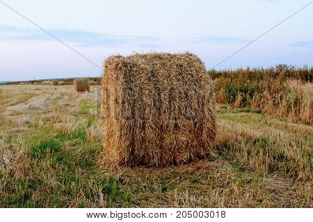 A hay ball on the field awaiting transportation to the storage.