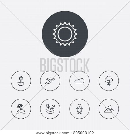Collection Of Leaf, Cloud, Penguin And Other Elements.  Set Of 9 Ecology Outline Icons Set.