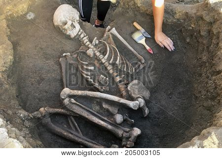Archaeological excavations. archaeologist with tools conducts research on human burial skeleton skull.