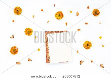 Autumn Composition. Orange Flowers, Dried Autumn Flowers, Notebook On White Background. Flat Lay, To