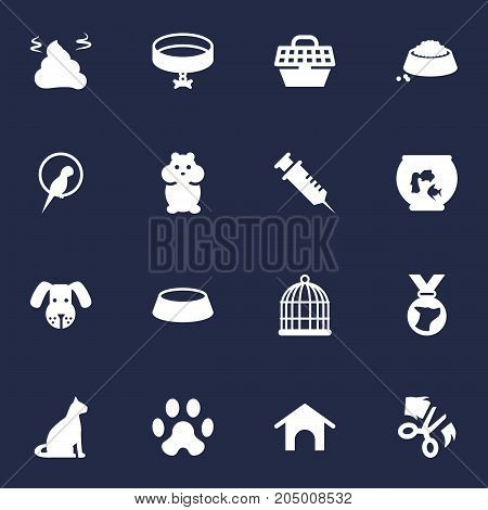 Collection Of Food , Fishbowl, Neckband Elements.  Set Of 16 Mammal Icons Set.