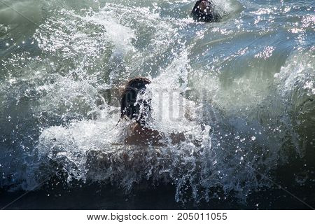 The wave covers the person with a head and carries away to the sea