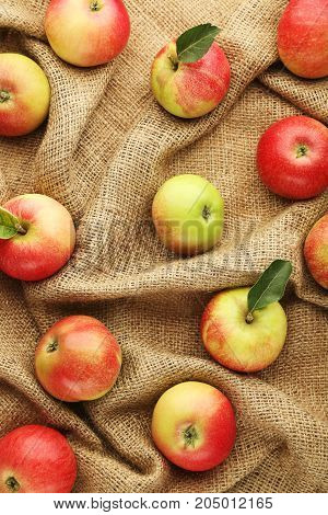 Ripe and sweet apples on the sackcloth