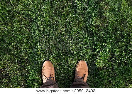 Beige suede boots on a green grass. Top view, vibranr picture. Space for text.