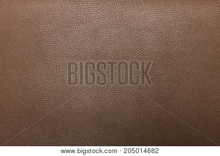 High resolution texture. Background. Skin. Pattern. Photography