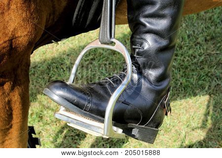 Shiny black leather riding boot and stirrup of a rider on a brown horse.