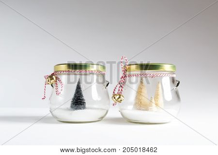 Small Christmas trees in glass jars on a white background