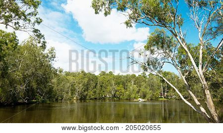 A small boat harbor set in an Australian bush landscape with a blue sky and a tree studded horizon over water. Photographed at Lake Macquarie Central Coast New South Wales Australia.