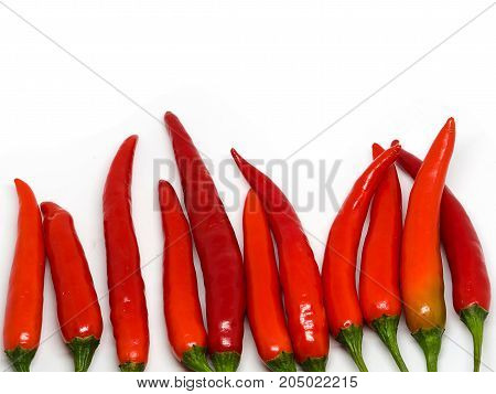Red chili peppers isolated on a white background.