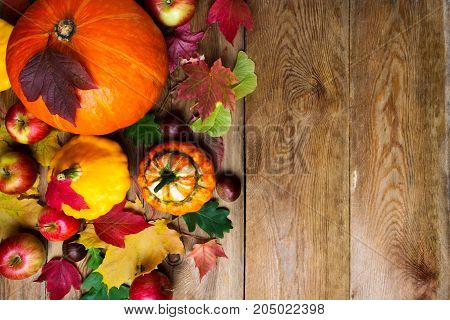 Chestnut, Apples, Pumpkins And Maple Leaves, Copy Space.