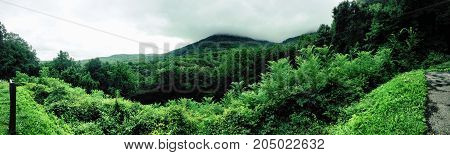 a panoramic shot of the great smoky mountains.
