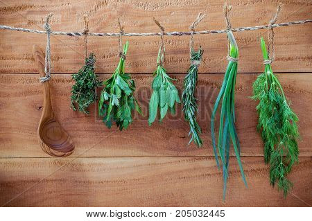 Various Herbs Hanging On Shabby Wooden Background.  Parsley ,oregano, Mint, Sage, Rosemary, Sweet Ba