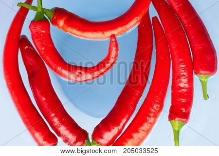 Red cayenne peppers (Capsicum annuum) in water close up. Top view. Also known as Guinea spice, cow-horn pepper, red hot chili pepper, aleva, bird pepper.