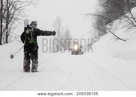 Freeride run in Siberian forest, powder run