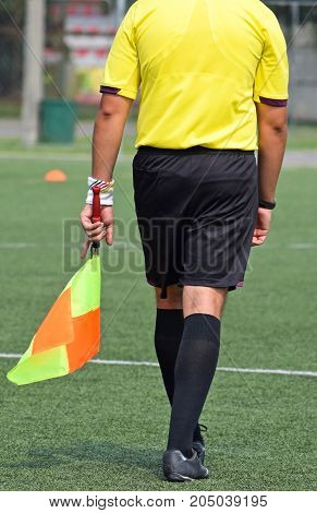 Soccer referee with a flag outdoor in summer