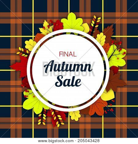 White round frame decorated with yellow, red and brown leaves of maple, chestnut, ash and other trees with the inscription Final autumn sale on a checkered background