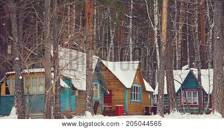 colored wooden houses in the winter pine forest