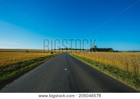 Empty Asphalt Country Road Passing Through Yellow Wheat Field. Country Landscape On A Sunny Summer D