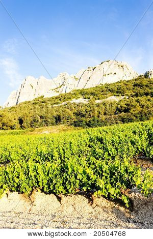 vineyards near Gigondas at Col Du Cayron, Provence, France poster
