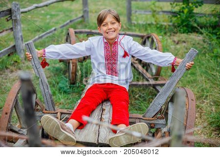 Cute happy boy in Ukrainian embroidered shirt.