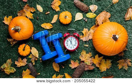 Blue Dumbbells And Autumn Pumpkin Wih Alarm Clock And Leaves