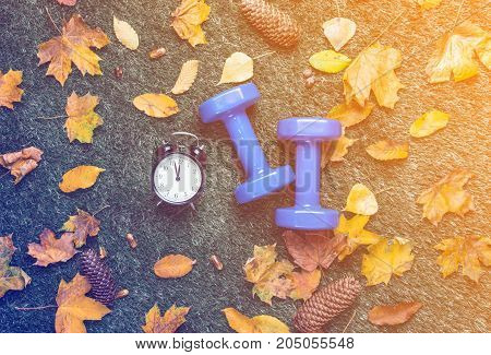 Blue Dumbbells And Autumn Leaves With Alarm Clock
