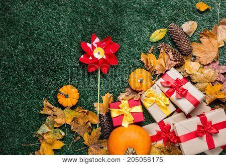 Pumpkin And Autumn Season Leaves With Pinwheel Toy