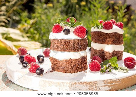 Chocolate Cake Decorated With Raspberry, Black Currant, Wipped Cream And Mint.