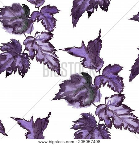 Pattern hand drawing watercolor blue and purple leaves ornament