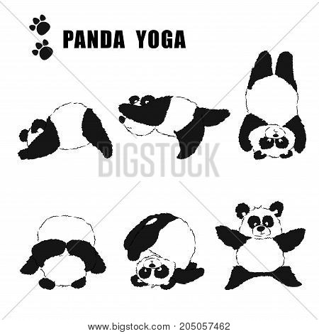 A Set Of Pandas Engaged In Yoga. Black And White Pattern On A Transparent Background