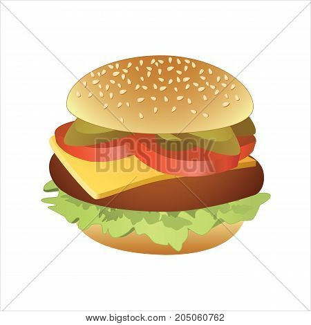 Vector illustration of classic cheeseburger on white background.